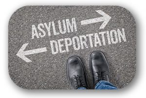 Asylum petitions